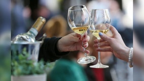 National Wine Day: These free-to-stream films will have you feeling like a sommelier