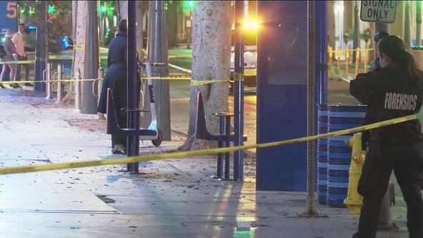 DA's office asks for further investigation of deadly Santa Monica stabbing