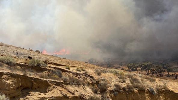 Crews battle brush fire in Hesperia