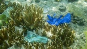 Discarded masks, gloves significant source of beach pollution, report says