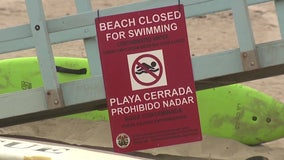 Beachgoers asked to avoid water after high bacteria levels found near site of 17M gallon sewage spill