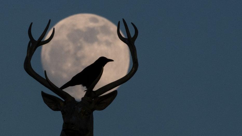 Moon over Stuttgart