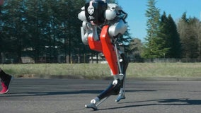 Bipedal robot becomes 1st ever to run 5K, university says