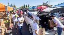 Volunteer opportunities to help combat hunger in SoCal
