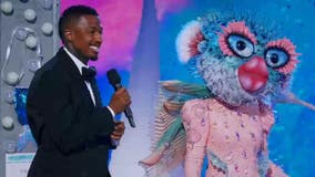 'The Masked Singer': Mother Nature, Pufferfish get booted in double elimination