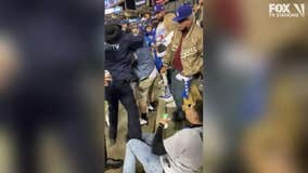 VIDEO: Dodger fans brawl during crucial Game 4 of NLDS