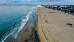 PHOTOS: Massive oil spill off California coast shows impact on wildlife, beachside communities