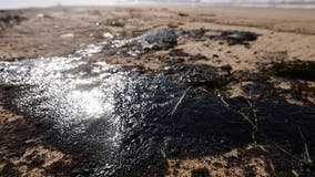 Oil company says pipeline shut down after Huntington Beach leak