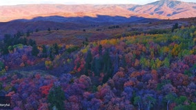 Drone photographer captures 'Skittles rainbow of color' in Utah