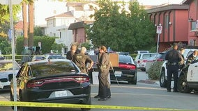 Domestic violence suspect shot by LAPD officers in Palms dies