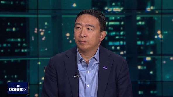 The Issue Is: Andrew Yang, Ana Kasparian and Steve Hilton