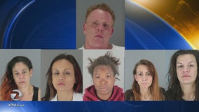 Drug smuggling ring busted