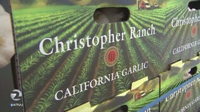 Gilroy garlic to benefit from trade war with China