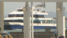 Rise in Bay ferry popularity: Creating new commuter corridors