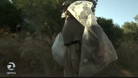 Homeless aim to keep Coyote Creek clean