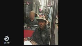 Serial Muni groper sought