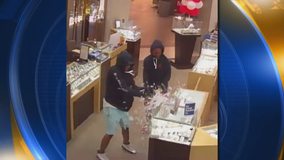 Police release Milpitas Great Mall jewelry store robbery suspect photos