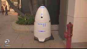 Security robot concerns: Company denies guard ran over toddler's foot