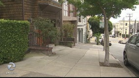 Good Samaritan helps prevent kidnapping in San Francisco's Pacific Heights neighborhood