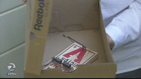 Overrun by Rats: Novato woman blames dumpsters for infestation