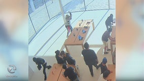 Month-old Walnut Creek Apple store robbed