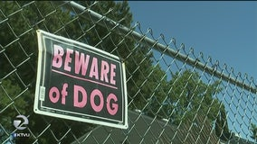 Fairfield woman seriously injured in attack by own dog