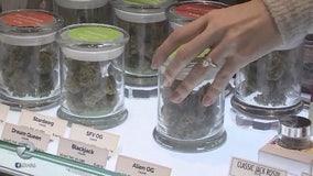 Jay-Z partners with San Jose-based weed company, Caliva