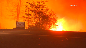 Judge: PG&E must revamp inspections, record-keeping to prevent catastrophic wildfires