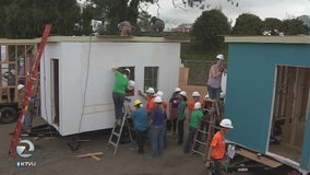 Youth-lead project creating tiny home village in Oakland for homeless youth