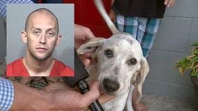 Florida man accused of biting dog