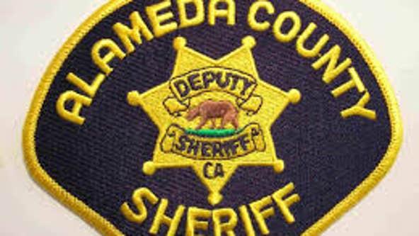 Dog killed as deputies patrol homeless encampment near Hwy 580
