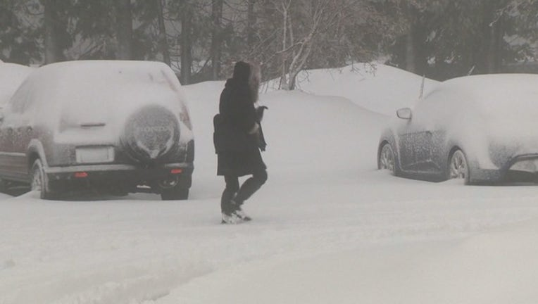 bbc5eace-5FRI SIERRA SNOW 2_00.00.23.03_1550285841435.png.jpg
