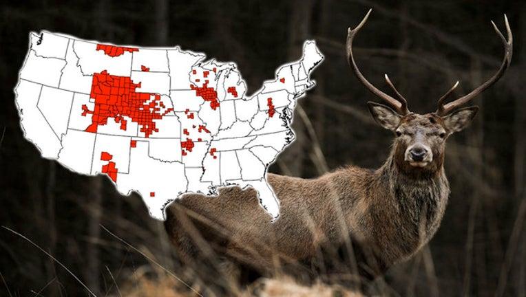 f2df5d96-CDC Getty_deer_021919_1550578588690.jpg-403440.jpg