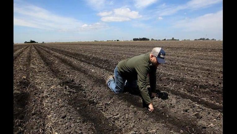 7d9b0629-California Drought Water Cuts_1438285053731