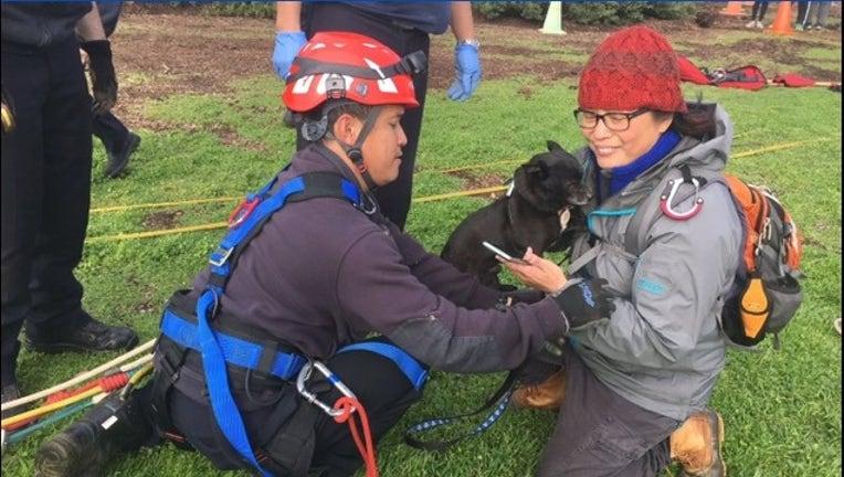c1a3e486-Ft Funston dog rescue_1548032253647.PNG.jpg