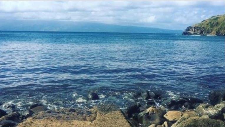942c995d-Maui_beach_Leslie_Dyste_1551717944213.JPG