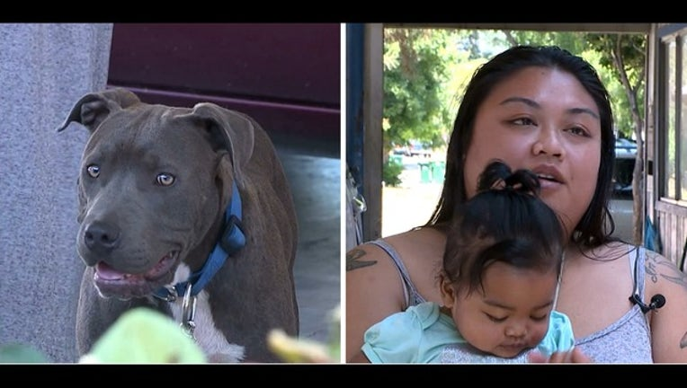 Pit bull credited with saving Stockton woman and baby | KTVU FOX 2