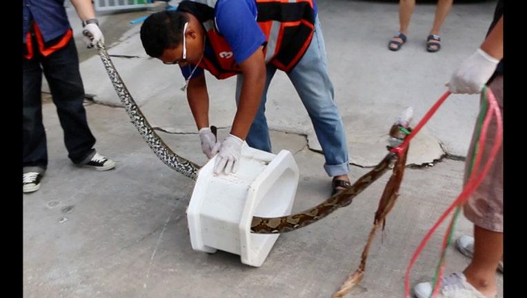 899e5483-Thailand Toilet Ordeal_1464284885297