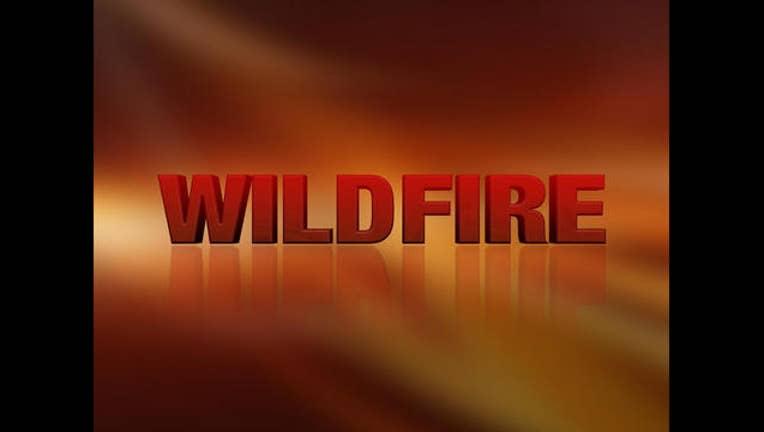 a755ed99-wildfire_1467332910694.jpg