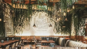 Nation's 1st farm-to-table cannabis cafe opens in California