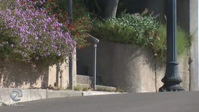 Residents in Oakland's Upper Rockridge neighborhood in shock following late-night abduction
