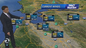 Cool and windy, high surf advisory