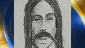 Fox 2 Unsolved: New sketch in Hayward cold case of missing woman