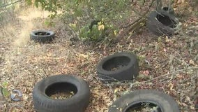 Hundreds of tires dumped illegally along the Russian River