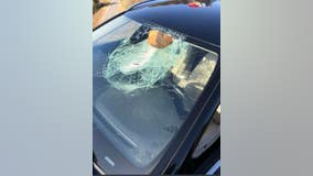 Close call: Chunk of wood smashes through driver's windshield on I-80 in Richmond