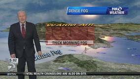 Thick, dense fog in morning, sunny and mild afternoon