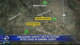 Carjacking suspect dies in custody
