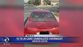 Car windows smashed, spray painted in American Canyon vandalism spree