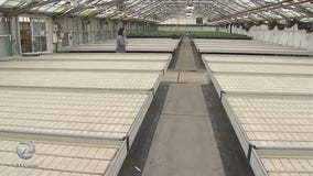 After more than a century in business, Half Moon Bay flower farm closes