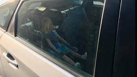 Carpool violator caught with doll strapped into child's car seat
